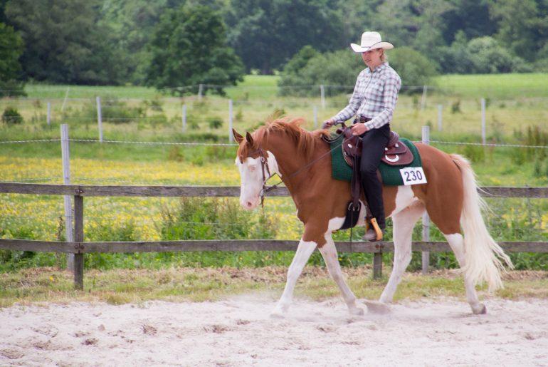 Jennifer Oltmanns aus Bad Zwischenahn reitet seit fünf Jahren Western - im Nordwesten eine eher seltete Sportart. Mit ihrem Wallach Günni (Topgun) startet sie auf Turnieren der EWU Bremen/Niedersachsen (Foto: Privat).