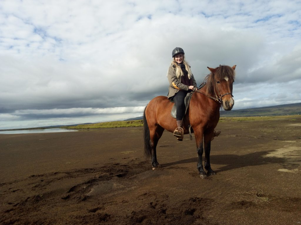 Unterwegs auf Islandpferden